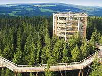 stezka korunami stromů - Lipno nad Vltavou