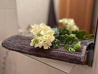 Chodba, koupelna se sprchovým koutem a toaletou. - apartmán k pronájmu Prášily