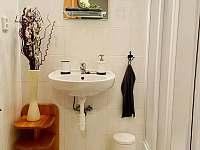 Chodba, koupelna se sprchovým koutem a toaletou. - Prášily