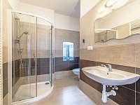 Koupelna - apartmán k pronájmu Horní Planá - Hůrka