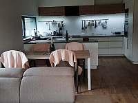 Kuchyně - chata k pronajmutí Lipno nad Vltavou