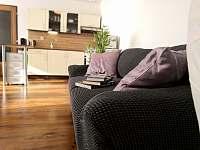 Obývací pokoj s kuchyní - apartmán k pronájmu Hartmanice