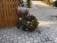 Vila Dendy - pronájem vily - 25 Klatovy