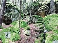 Výstup na rozhlednu Na Sedle - Stachy