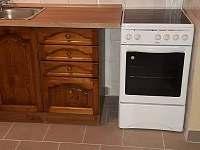 Apartmán Lipno-Apartmán 1 kuchyn