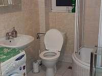 Apartmán Lipno-Apartmán 2 koupelna