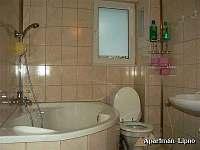 Apartmán Lipno-KOUPELNA A1