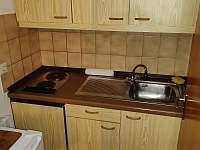 Zwiesel - Německo - apartmán k pronajmutí - 9