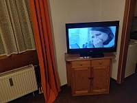 Zwiesel - Německo - apartmán k pronajmutí - 14