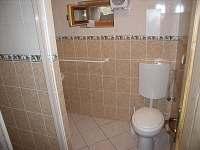 WC - chalupa k pronájmu Vícemily
