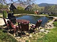 Zahradní posezení s grilem a zahradním jezírkem - Petrovice u Sušice - Strunkov