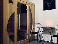 ubytování Skiareál Železná Ruda - Špičák v apartmánu na horách - Železná Ruda