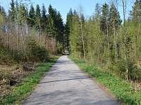 cyklostezka kolem Lipna