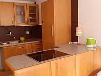 Kuchyňka - pronájem apartmánu Borová Lada