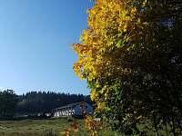 Stachy - Lesní Chalupy - chalupa k pronájmu - 43