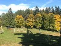 Pohled z chalupy - Stachy - Lesní Chalupy