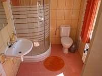 Apartmány Mikeš - pronájem rekreačního domu - 12 Kašperské Hory