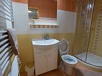 pokoj 1 - koupelna + WC - chalupa k pronajmutí Nová Pec