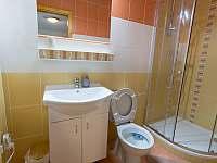 pokoj 1 - koupelna + WC - Nová Pec