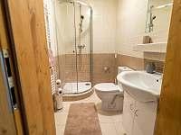 pokoj 2 - koupelna + WC - Nová Pec