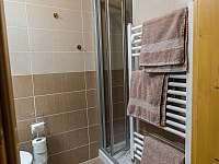 pokoj 4 - podkroví -koupelna + WC - Nová Pec