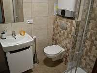 koupelna - apartmán k pronájmu Stožec