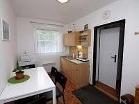 Apartmán B - kuchyně - pronájem Bělá - Nová Pec