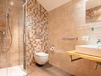 Apartmán B koupelna - k pronájmu Přední Výtoň