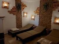 sauna - apartmán k pronájmu Přední Výtoň