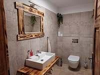 sauna - apartmán k pronajmutí Přední Výtoň