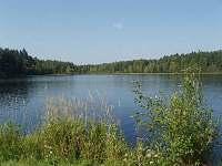 Křišťanovický rybník - Sviňovice