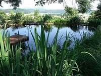 biotop s vorem, za zády molo a sauna