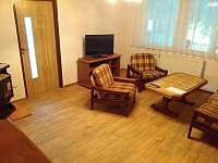 Obývací pokoj - chalupa k pronájmu Javorník na Šumavě