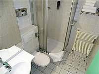 Koupelna - apartmán k pronájmu Strážný - Mitterfirmianstreut