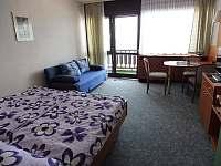 Pokoj - apartmán ubytování Strážný - Mitterfirmianstreut