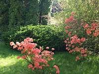 Stín najdete skutečně všude i na jaře - Babylon