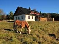 Penzion na horách - dovolená Českokrumlovsko rekreace Stožec