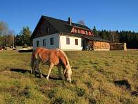 Penzion na horách - dovolená Šumava rekreace Stožec