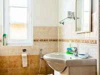 Koupelna v přízemí - pronájem rekreačního domu Černá v Pošumaví