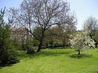zahrada - chalupa k pronájmu Soběšice