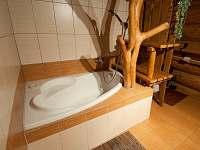 Koupelna v prizemi