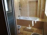 Koupelna a wc v apartmánu - ubytování Nezdice na Šumavě