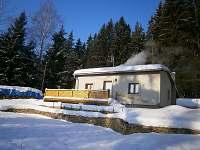Lipno nad Vltavou - Kobylnice - chata k pronajmutí - 10