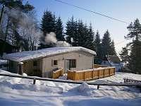Lipno nad Vltavou - Kobylnice - chata k pronajmutí - 11