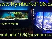 Frymburk - apartmán k pronájmu - 20