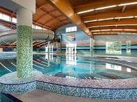 Wellness Hotel Frymburk vnitřní bazén - apartmán ubytování Frymburk