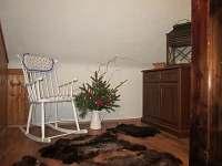 Chalupa na Šumavě - pronájem chalupy - 12 Onen Svět - Javorná