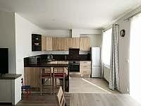 Kuchyň s obývákem - apartmán k pronájmu Frymburk