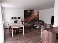 Obývák - apartmán k pronajmutí Frymburk