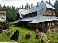 ubytování Skiareál Großen Arber / Velký Javor Penzion na horách - Špičák